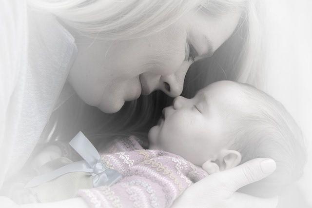 Información sobre reproducción asistida en Internet