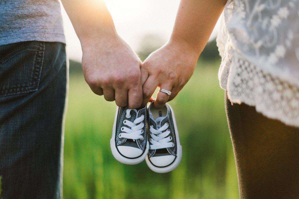 Todo lo que necesitas en un proceso de reproducción asistida